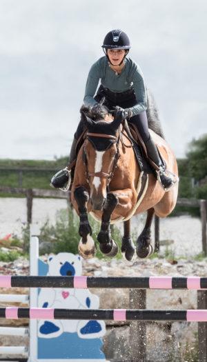 Varenta Gem - Chevaux de sport du Haras de Clarbec