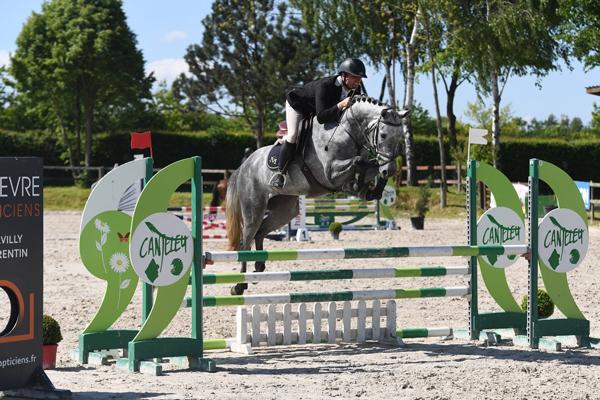 chevaux de sport de 4 à 6 ans - Haras de Clarbec